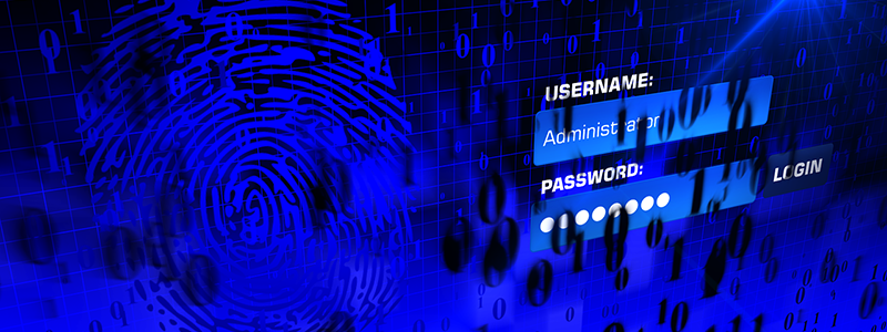 vulnerable password