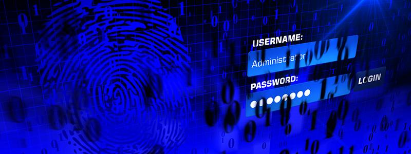 vulnerable password